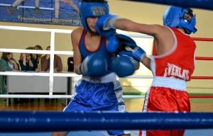 Момент финального боя Тимура Амирбека (в синей форме)