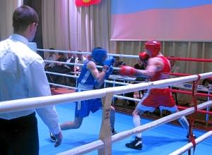 Полуфинал.  Алексей Помогалов (в синей форме) против Никиты Маюрникова