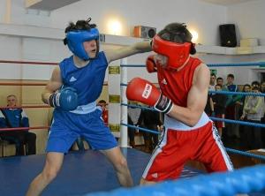 Момент боя Алексея Помогалова (в синей форме) (3)