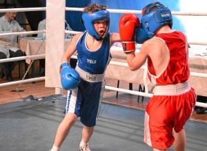 Финал. Момент боя с участием Егора Мартыненко (в синей форме) 1 (3)