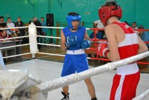 13 Полуфинал. на ринге Тимур Амирбек (в синей форме)