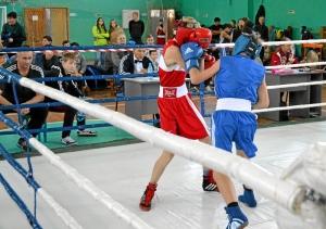 6 Полуфинал. Иван Балашов (в синей форме)  в бою с боксером из Кемерова