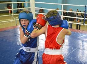 27 Момент боя с участием Егора Мартыненко (в синей форме)