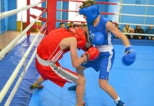 1 (17) Полуфинал. Момент боя  Ивана Балашова (в синей форме)