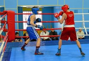 1 (18) Полуфинал. Момент боя  Алексея Шелякина (в синей форме)