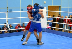 1 (22) Полуфинал. Момент боя  Рубика Шахбазяна (в синей форме)