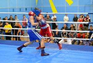 1 (7) Момент боя  Алексея Шелякина (в синей форме) с таштагольцем Данилом Чабаном