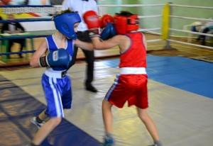 3 Первый день соревнований. Момент боя с участием Сергея Чепли (в синей форме)