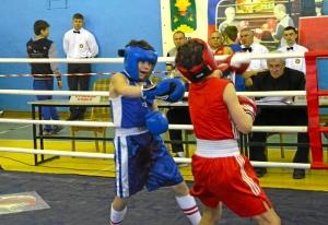 7 Полуфинал. Момент боя Данила Жуланова (в синей форме)