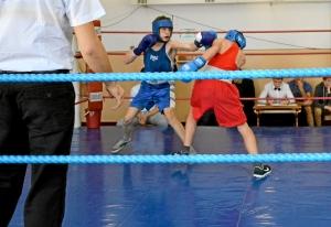 4 На ринге Сергей Лаптев (в синей форме)