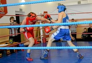 7 На ринге Дмитрий Красовский (в синей форме)