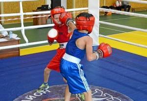 (2) На ринге Денис Ращук (в синей форме)