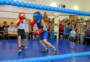 (2) На ринге Егор Шелков (в синей форме)