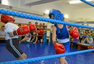 (4) На ринге Егор Шелков (в синей форме)