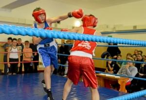 (8) На ринге Алексей Чужегов (в синей форме)