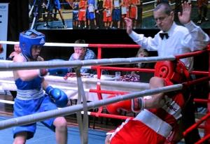 (17) Полуфинал. На ринге Данил Жуланов (в синей форме)