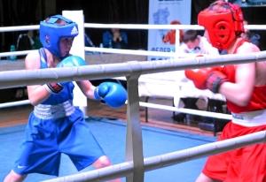 (19) Финал. На ринге Данил Жуланов (в синей форме)
