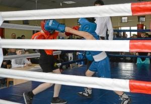 (1) Момент боя Егора Шелкова (в синей форме)
