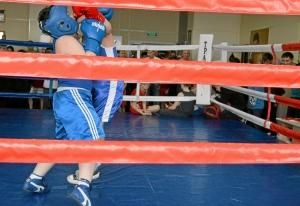 (2) Момент боя Андрея Файзулина (в синей форме)