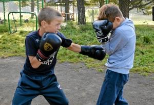 3 Утренняя работа над школой бокса (2)