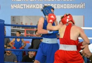 (17) Полуфинал. Момент боя Антона Гобова (в красной форме)