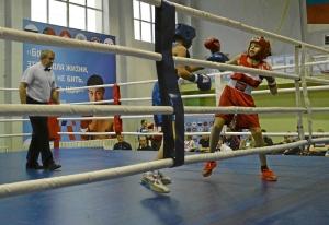 (19) Полуфинал. На ринге Александр Сова (в синей форме)