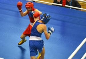 (5) На ринге Алексей Чужегов (в синей форме)