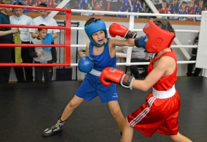 (14) Момент боя Зелима Близнюка (в красной форме) против Егора Шелкова