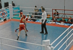 (2) Четвертьфинал. Момент боя Андрея Демшина (в красной форме)
