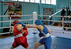 21 На ринге Андрей Дёмшин (в синей форме) (1)