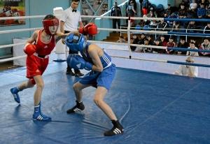 21 На ринге Андрей Дёмшин (в синей форме) (2)