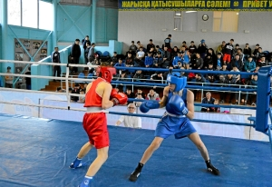 21 На ринге Андрей Дёмшин (в синей форме) (3)
