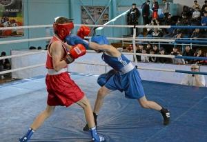 21 На ринге Андрей Дёмшин (в синей форме) (4)