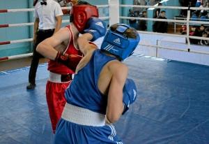 21 На ринге Андрей Дёмшин (в синей форме) (5)