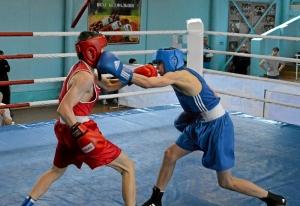 21 На ринге Андрей Дёмшин (в синей форме) (6)