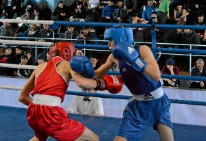 21 На ринге Андрей Дёмшин (в синей форме) (7)