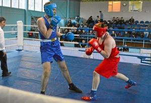 26 На ринге Александр Шульц (в красной форме)