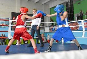 (3) На ринге Матвей Мулявин (в красной форме)