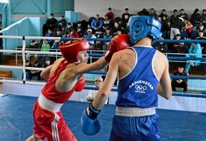 33 Финал. На ринге Андрей Дёмшин (в красной форме)