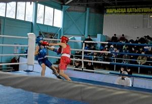 34 Финал. На ринге Андрей Дёмшин (в красной форме)
