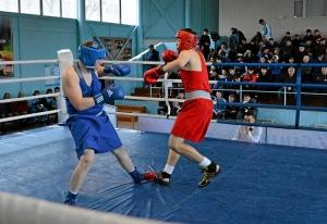 39 Финал. На ринге Александр Шульц (в синей форме)