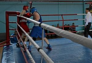 40 Финал. На ринге Александр Шульц (в синей форме)
