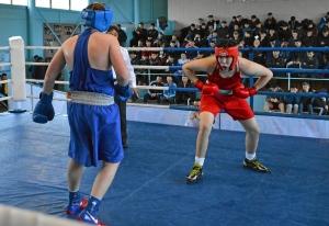 41 Финал. На ринге Александр Шульц (в синей форме)