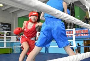(9) На ринге Андрей Дёмшин (в красной форме)