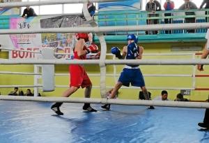 (2) На ринге Андрей Демшин (в синей форме)