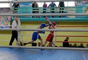 (3) На ринге Андрей Демшин (в синей форме)