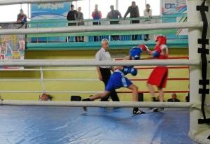 (5) На ринге Андрей Демшин (в синей форме)