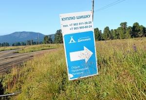 (1) Дорога на базу