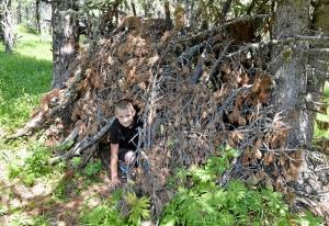 (46) Лесной обитатель