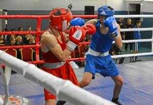 1 (1) На ринге Андрей Демшин (в синей форме)